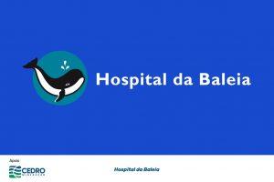 """Com o apoio da Cedro Mineração, o projeto """"Humanização no Cuidado do idoso Dialítico""""do Hospital da Baleia promoverá a ampliação da atenção ao idoso que se encontra em estágio avançado da doença renal. Hospital da Baleia"""
